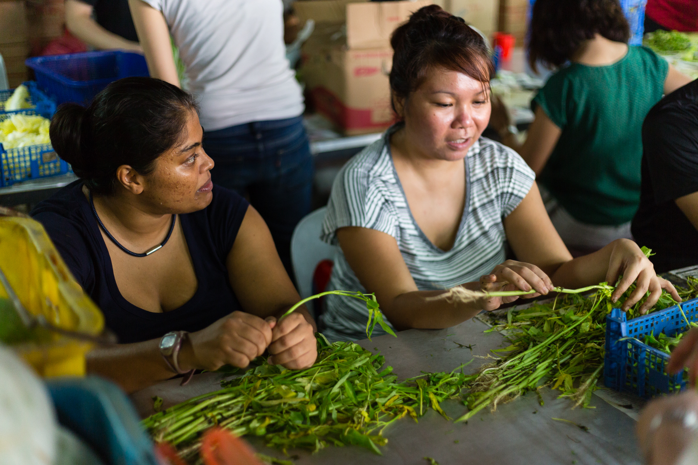 Ashima and Alexis begin the chain by prepping vegetables of all sorts